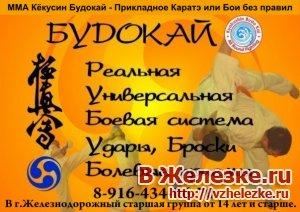 ММА Будокай - Прикладное Каратэ или Бои без правил.