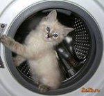 Ремонт стиральной машинки в железке
