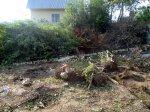 Расчистка участка. Покос травы. Вырубка дерева. Корчевка пня.