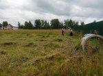 Расчистка участка, покос травы, бурьяна, спил дерева, кустарника